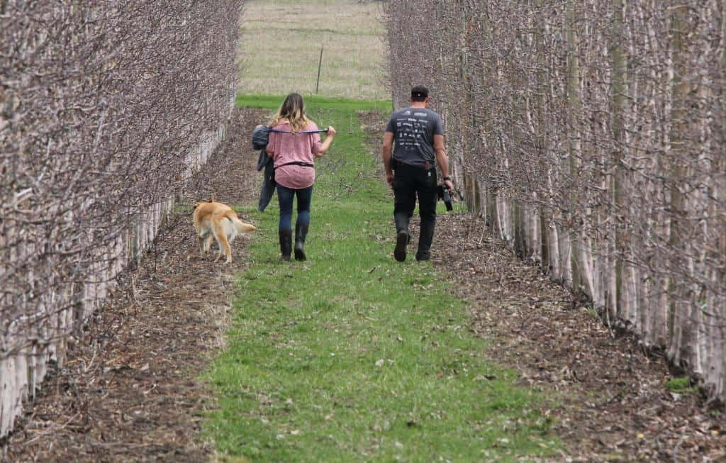 the whole family walking through their orchard